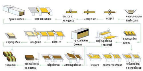 texnologiya_proizvodstva_fanery_5